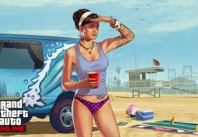 Grand Theft Auto V, gta, пляж, девушка, girls, фургон, птицы, флаг