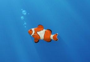 золотая рыбка, пузыри, синий фон, рыба клоун, полоски