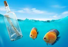 underwater, письмо, бутылка, океан, рыбки, море