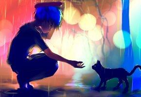 рука, дождь, кот, лужи, огни, парень