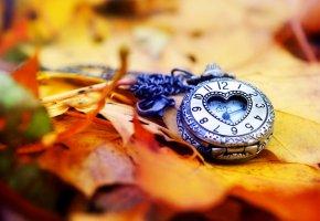 часы, циферблат, стрелки, листья, осень, сердце