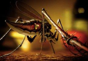 Обои москит, on, off, комар, лапы, робот, кнопка