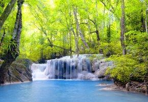 лес, водопад, брызги, озеро, деревья, вода, листья