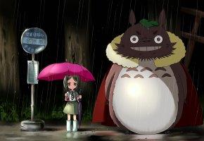 мой сосед тоторо, my neighbor totoro, дождь, остановка, девочка, зонт, розовый, ночь