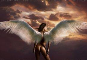 Обои крылья, ангел, девушка, angel
