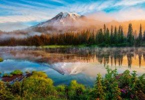 горы, Сша, река, отражение, туман, лес, трава