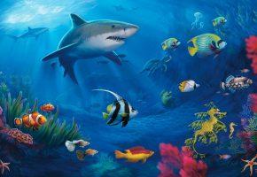 Обои кораллы, акулы, рыбки, мурена, черепаха, рыба клоун