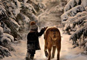 зима, мальчик, ребенок, собака, позитив, друзья, снег, лес