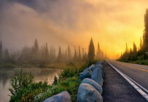 Обои дорога, туман, пейзаж, камни, лес, озеро