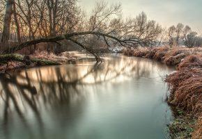 Обои снег, утро, река, деревья, иней
