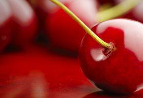 Обои вишня, черешня, красная, сладкая, макро, хвостик
