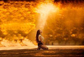 Обои осеннее настроение, осень, девушка, дорога, золото