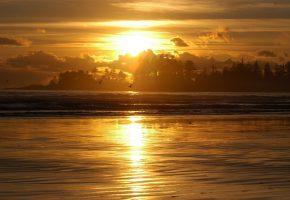 Обои Вечер, река, птицы, закат, деревья, небо