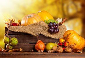 урожай, фрукты, овощи, тыквы, виноград, груши, орехи, каштаны, ящик, мешковина