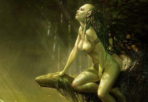 девушка, ведьмак, эльф, дерево