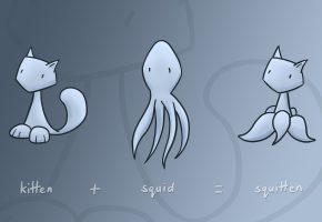 Обои вектор, юмор, минимализм, кот, kat, squid