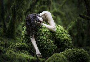 Обои girl, мох, moss, девушка, лес, волосы
