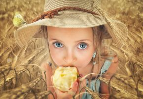 Обои девочка, шляпа, яблоко, взгляд, поле, колосья