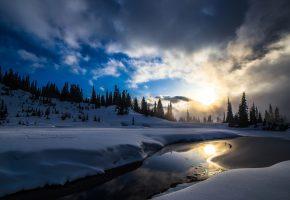 Обои закат, зима, деревья, пейзаж, снег, озеро