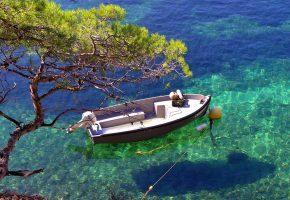 Обои Вода, чистая, прозрачная, лодка, дерево, бухта