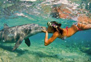 Обои дельфин, рыбы, девушка, поцелуй, венок, вода, океан