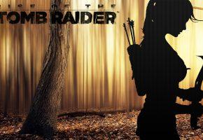 Обои rise of the tomb raider, lara croft, дерево, листья, кирка, стрелы, колчан