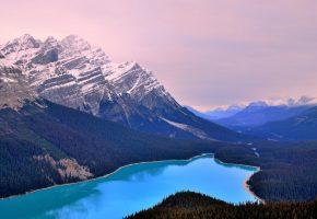 Обои горы, снег, вершина, лес, река, природа