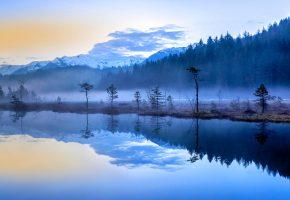 Обои Ломбардия, Италия, горы, озеро, деревья, туман