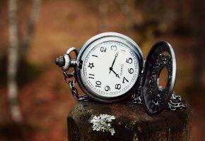 Обои часы, циферблат, стрелки, подвеска, дерево