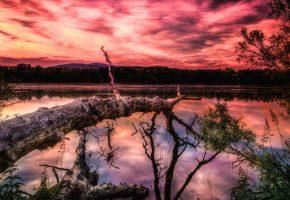 Обои небо, облака, закат, горы, озеро, дерево