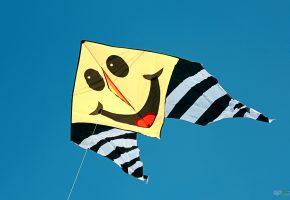 Обои змей, воздушный, улыбка, ветер, oboitut