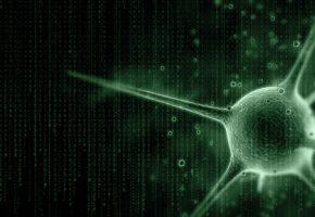 вирус, матрица, код, символы
