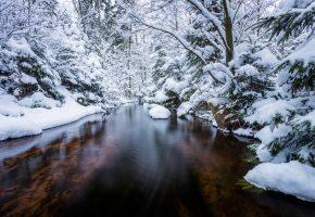 Обои река, снег, зима, лес, тишина