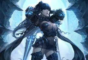 Обои арт, игра, девушка, воин, dual blade