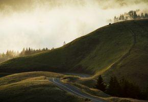 Обои Stinson Beach, california, холмы, дорога, трава, туман
