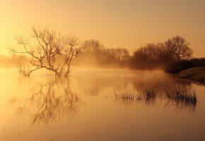 Обои озеро, lake, туман, вода, fog, water