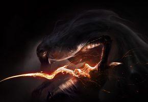 Dark, Souls, Монстры, пламя, огонь, меч