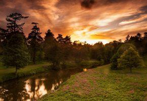 Обои закат, река, лето, лес, деревья, Нортумберленд, Англия