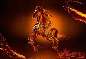 Обои лошадь, конь, копыта, грива, вода