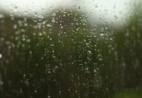 капли, сетка, дождь
