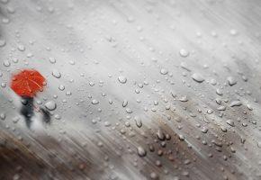 осень, дождь, капли, стекло, девушка, зонт, собака, силуэты