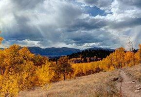 Обои свет, трава, горы, пейзаж, деревья, лес, облака, clouds, осень