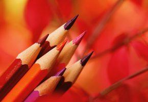 Обои карандаши, цветные, макро, фон