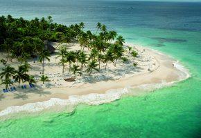 океан, пальмы, пляж, песок, берег