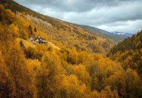 лес, горы, дом, осень, деревья, тучи
