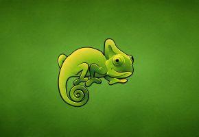 Обои хамелеон, зеленый, ящер, Chameleon, минимализм