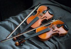 Обои Скрипки, фон, музыка, струны, инструмент