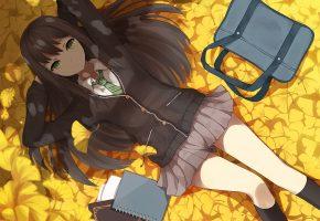 Обои осень, сумка, девушка, листва, art, anime, лежит