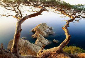 вода, деревья, скалы, озеро, небо