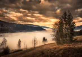 осень, деревья, горы, туман, закат, облака, тучи
